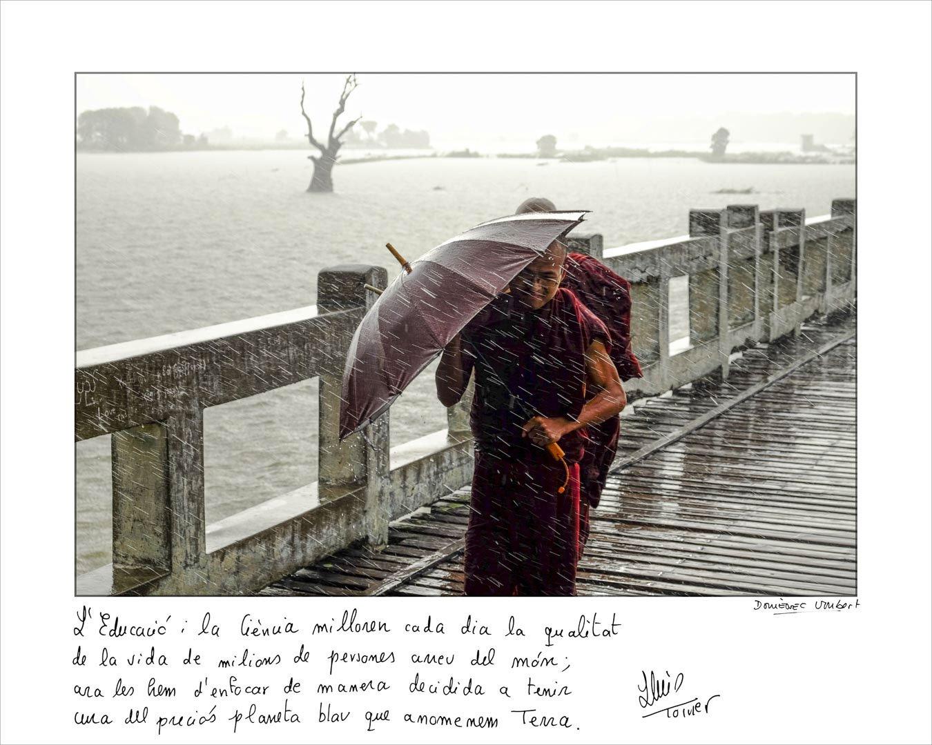 Domènec_Umbert-Lluis_Torner
